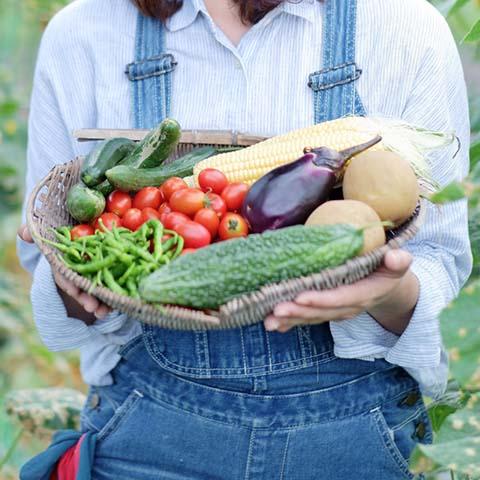 農産物・健康食品